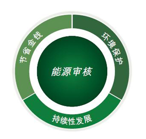 energy audit chinese